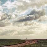 windpomp on the horizon