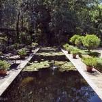 US Gardens Stellenbosch