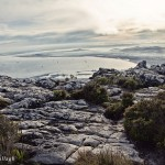 Morning walk on Table Mountain