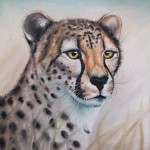 New painting: Cheetah