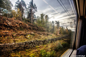 Train to Gothenburg